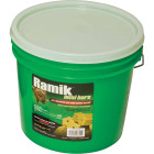 Ramik Bar Rat And Mouse Poison (64 per Pail) Image 2
